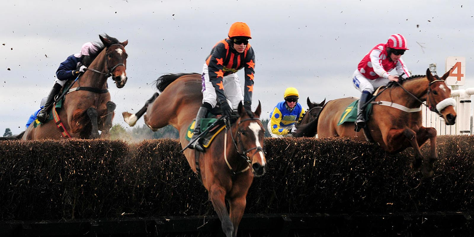 Horse Racing 24th march preview