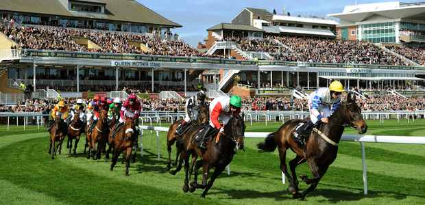 Horse Racing Preview Aintree Ladies Day 7th April 2017