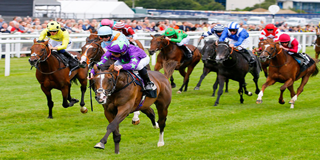Horse Racing Preview - Doncaster - 16th September 2017