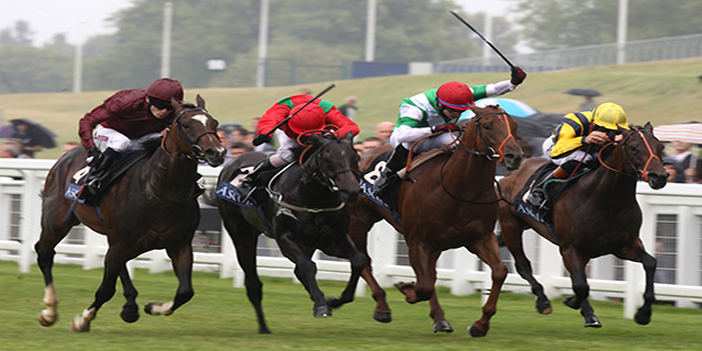 Horse Racing Preview - Ayr - 12th October 2017