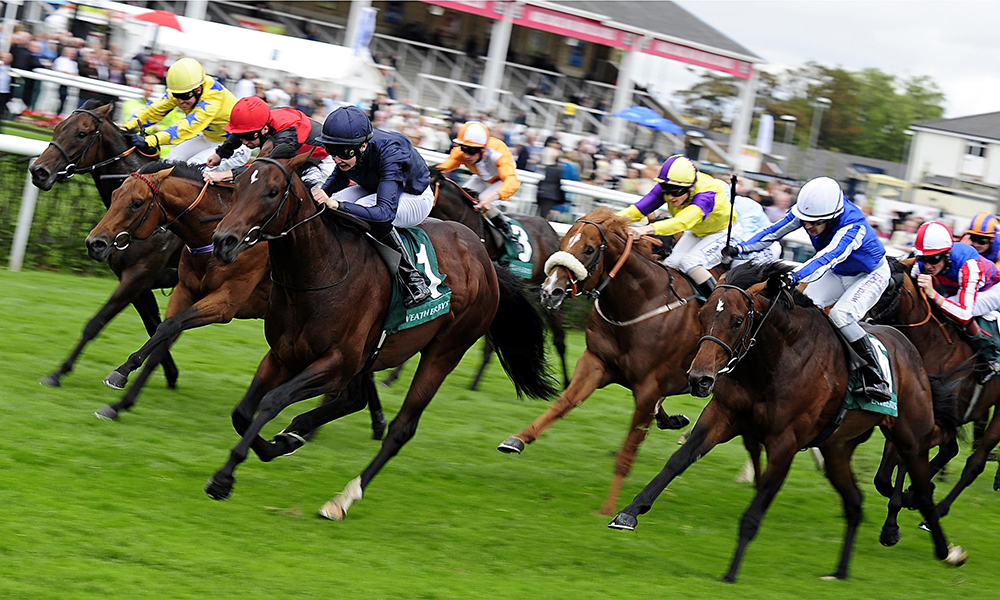 Horse Racing Preview - Kempton - 22nd October 2017