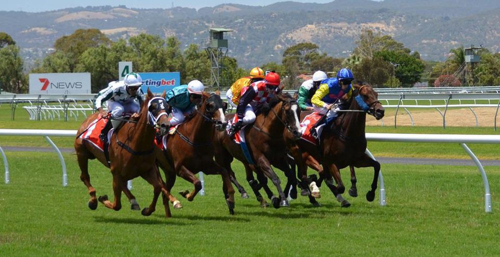 Horse Racing Preview - Windsor - 24th July 2017
