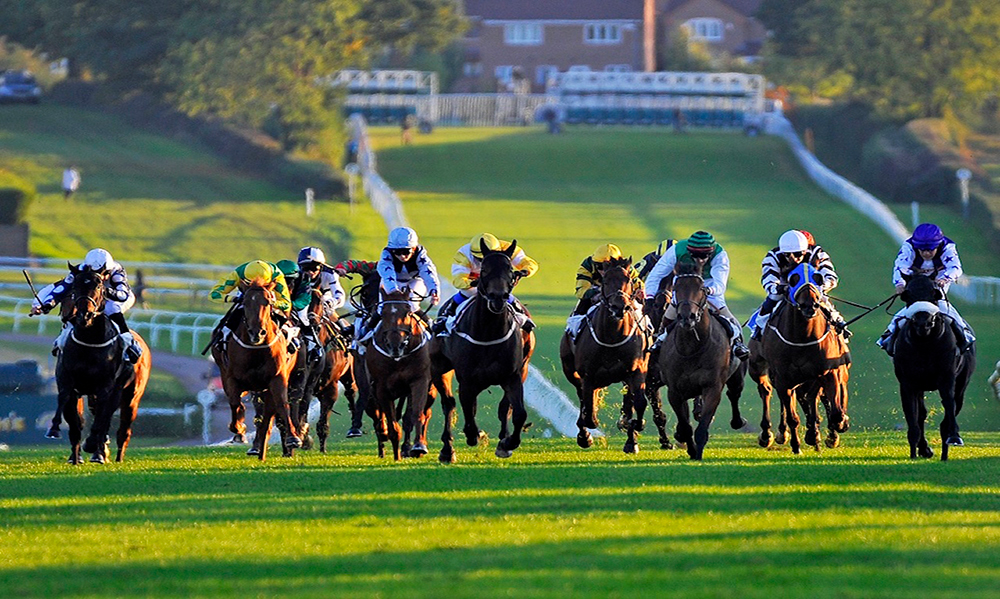 Horse Racing Preview - Newmarket - 3rd November 2017