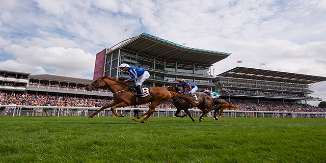 Daily Horse Racing Pro Tips - 21st July 2017