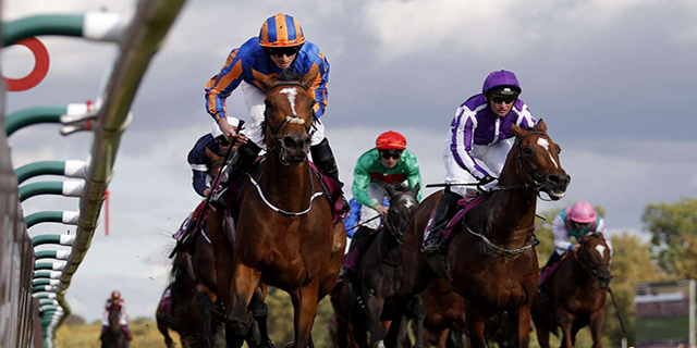 Horse Racing Preview - Newmarket - 29th September 2017