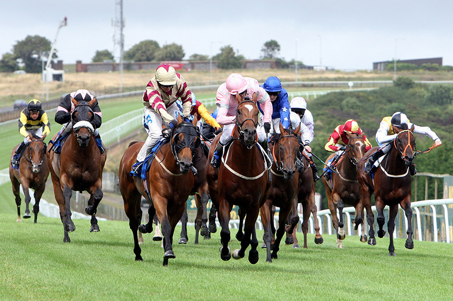 Daily Horse Racing Pro Tips - 17th August 2017