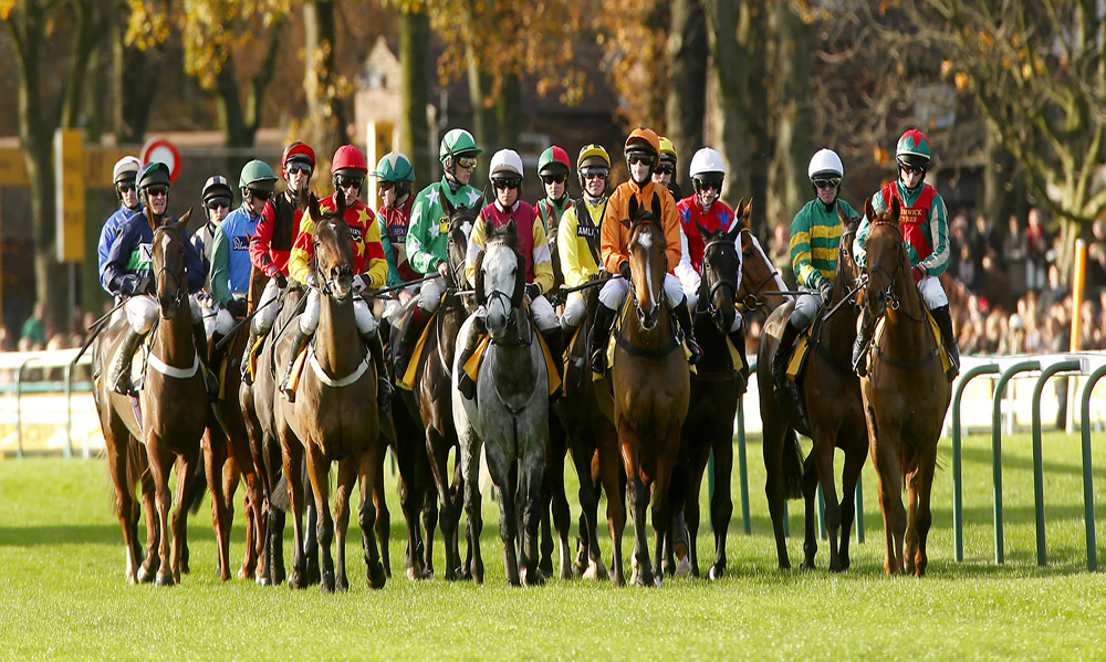 Horse Racing Pro Tips - 15th November 2017