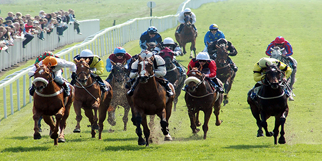 Daily Horse Racing Pro Tips - 17th October 2017