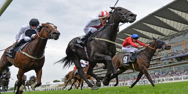 Horse Racing Preview - Doncaster - 27th October 2017