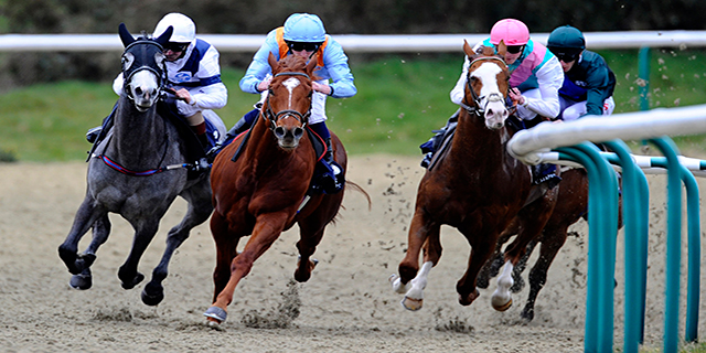 Horse Racing Preview - Catterick - 31st October 2017