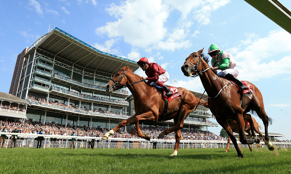 Horse Racing Preview - Haydock & Ascot - 8th September 2017