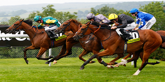 Horse Racing Preview - Nottingham - 1st November 2017