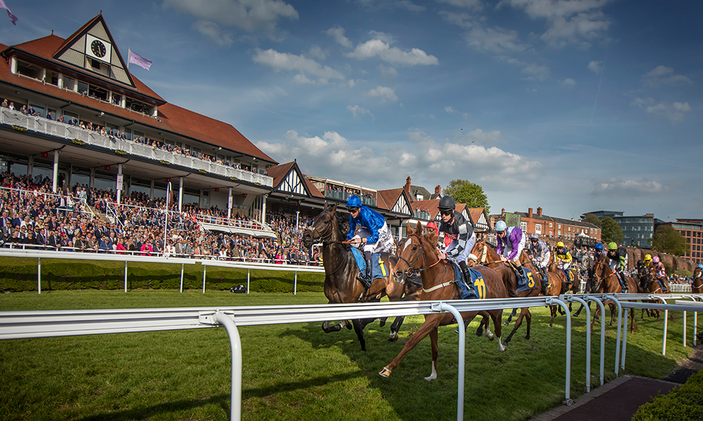 Daily Horse Racing Pro Tips - 13th July 2017