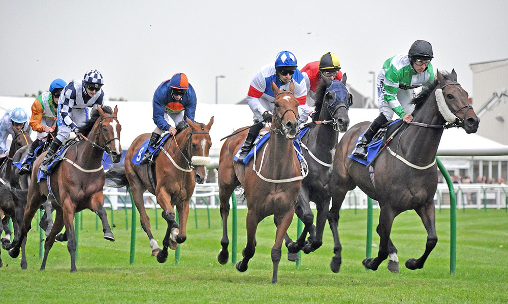 Horse Racing Preview - Worcester - 25th October 2017