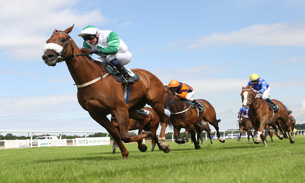 Horse Racing Preview - Ayr & Southwell - 3rd October 2017