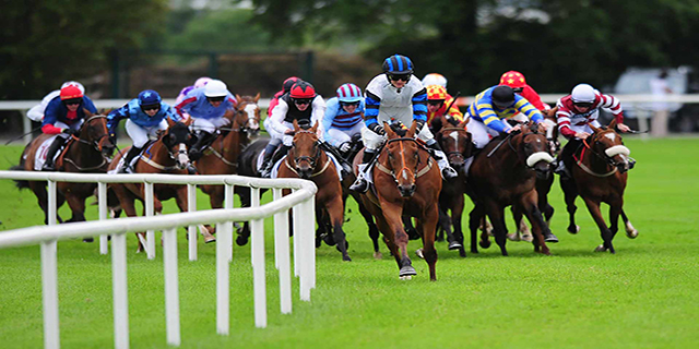 Daily Horse Racing Pro Tips - 26th October 2017