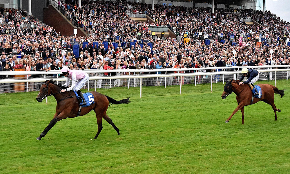 Horse Racing Preview - Newmarket - 14th October 2017