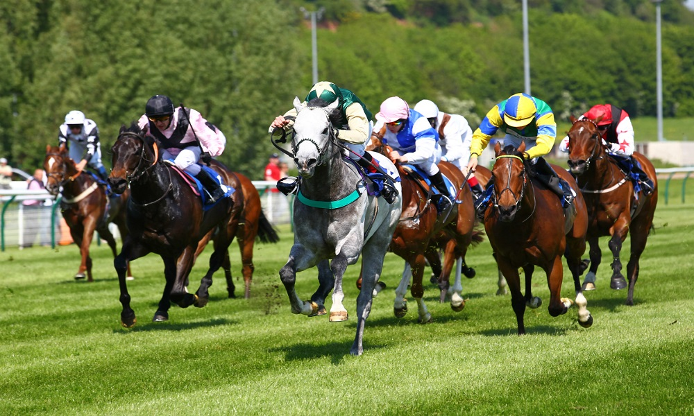 Horse Racing Preview -Fakenham, Perth & Listowel - 4th June 2017