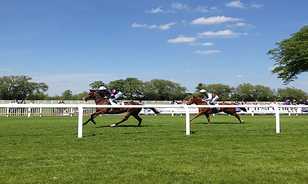 Horse Racing Preview - Windsor, Carlisle & Nottingham - 19th June 2017