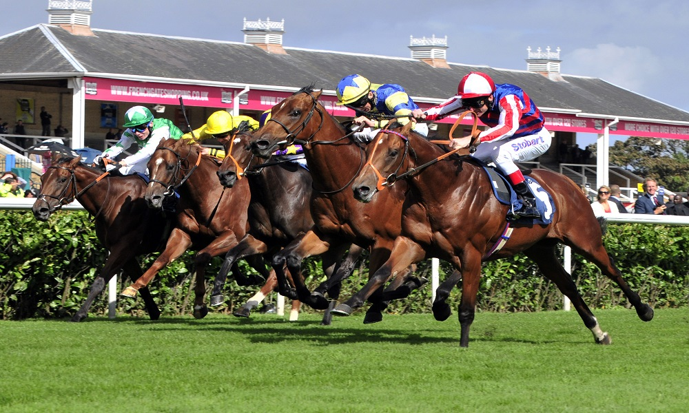 Daily Horse Racing Pro Tips - 23rd August 2017