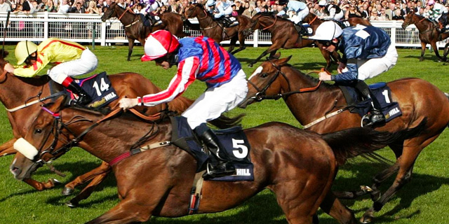 Horse Racing Preview - Leicester - 10th October 2017