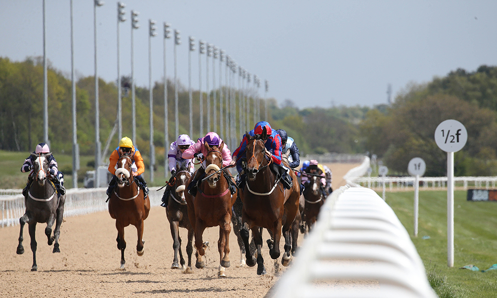 Horse Racing Preview - Newcastle - 24th October 2017