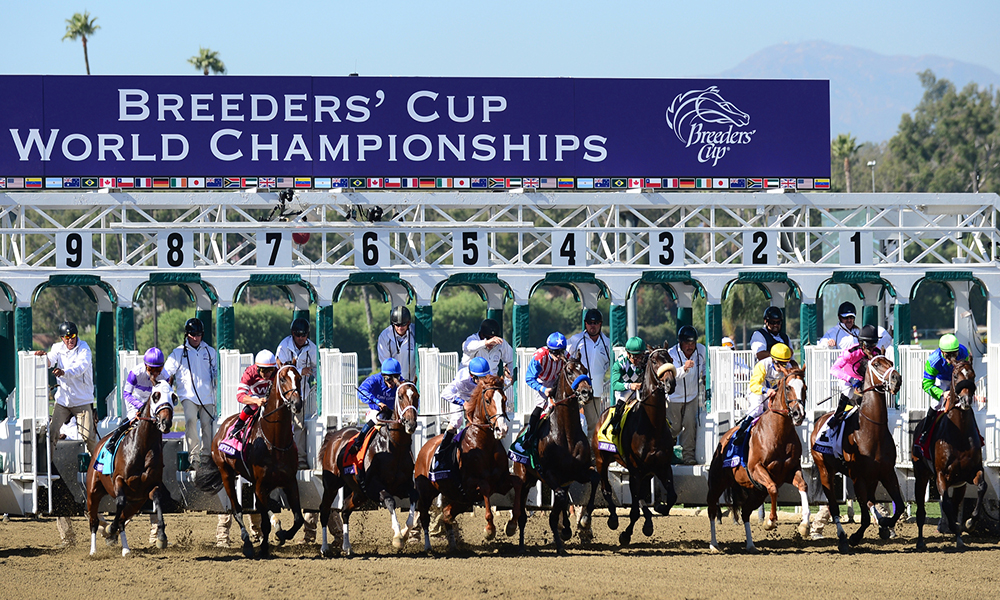 Horse Racing Preview - Breeders Cup - 4th November 2017