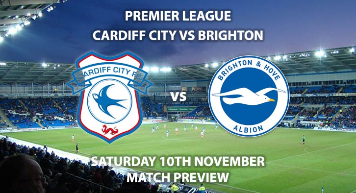 Match Betting Preview - Cardiff City vs Brighton & Hove Albion. Saturday 10th November 2018, FA Premier League, Cardiff City Stadium. Live on Sky Sports Main Event – Kick-Off: 12:30 GMT.